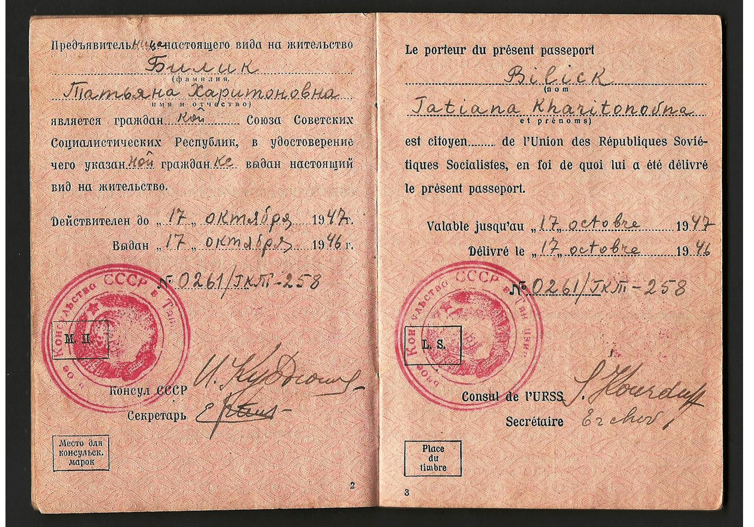 WW2 China passport