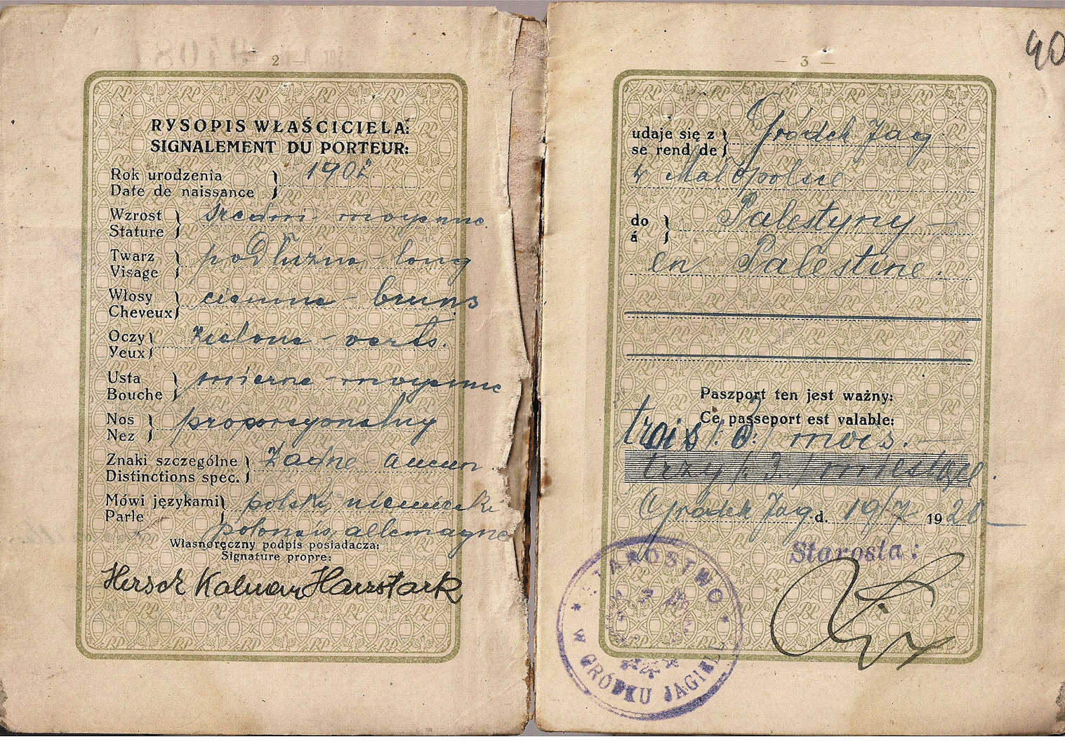1920 Polish passport