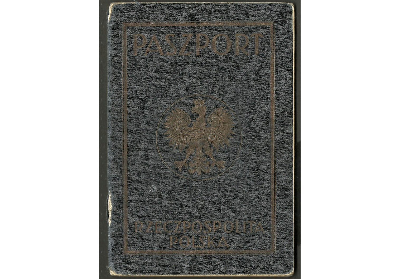 important WW2 Polish passport