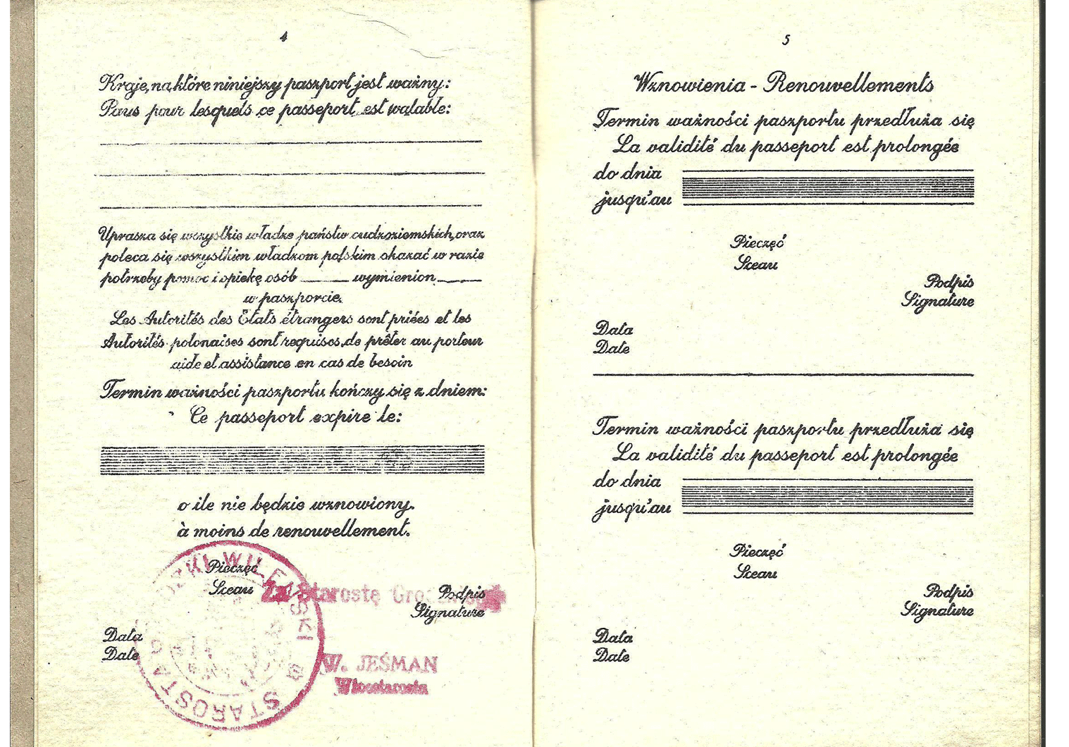 WW2 Polish fake passport