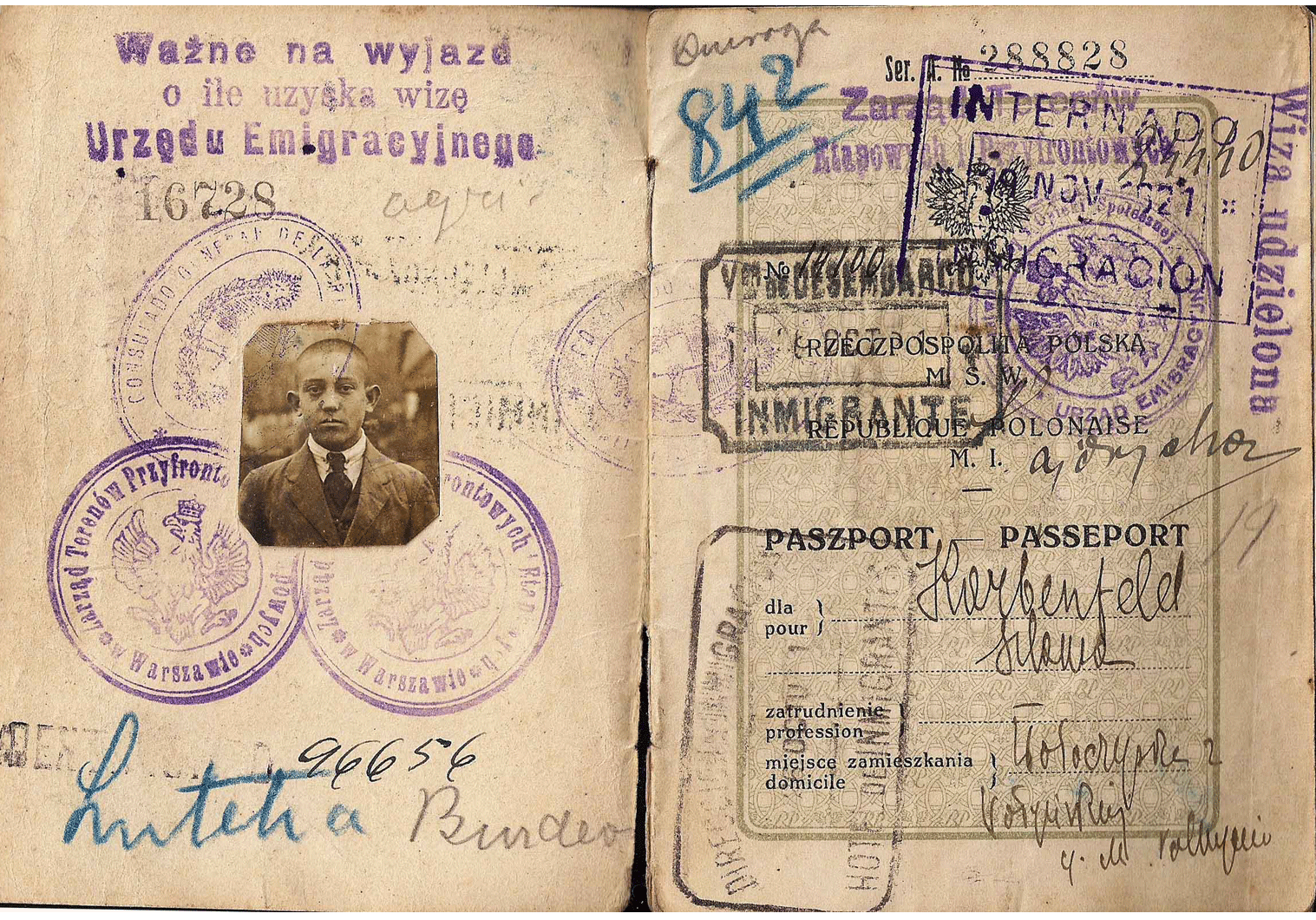 post-WWI passport issued in liberated former Russian territory.