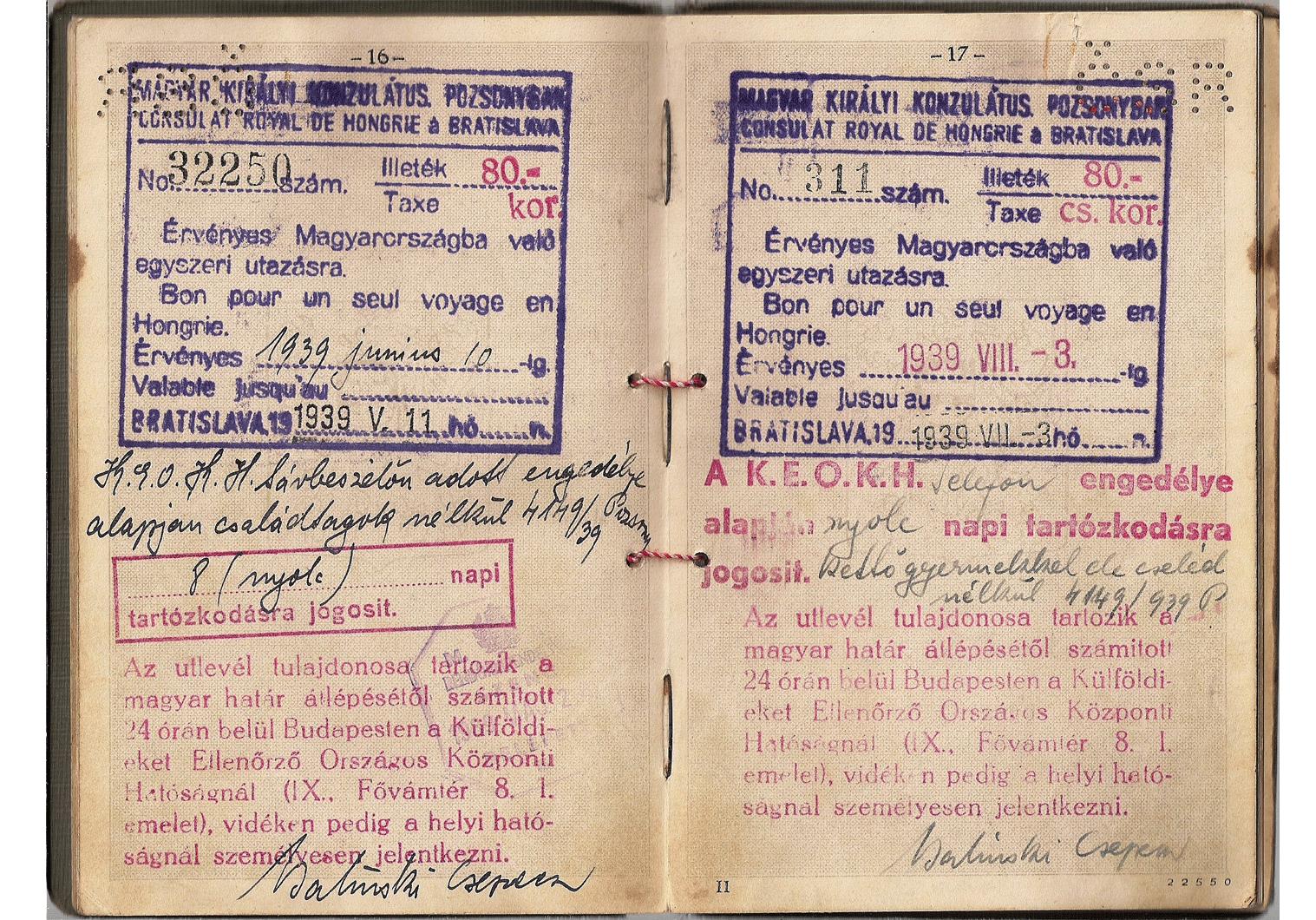 WW2 Hungarian visa